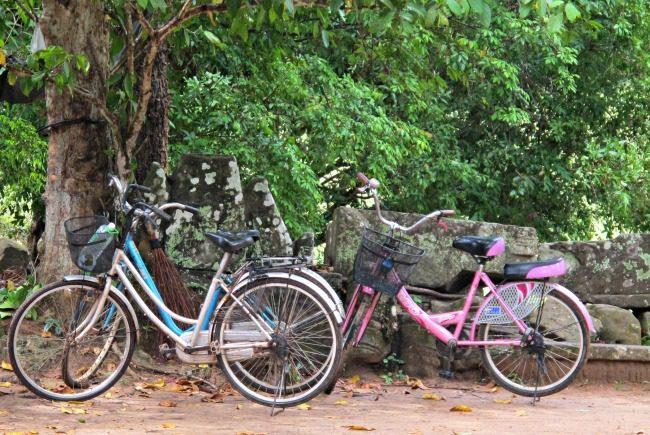 Angkor Wat Bikes