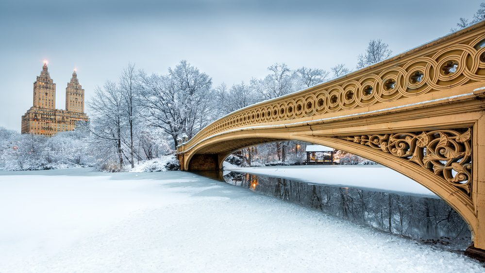 New York City Central Park in the snow