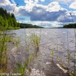 10 Reasons to Love Swedish Lapland in Summer