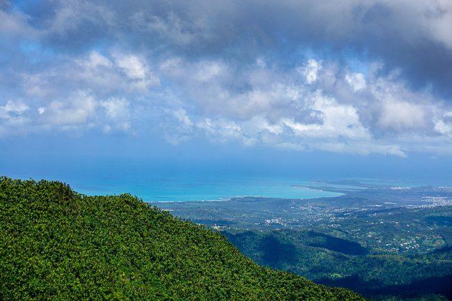 El Yunque puerto rico rainforest tour