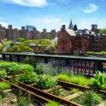 15 Best Things to Do in Chelsea NYC